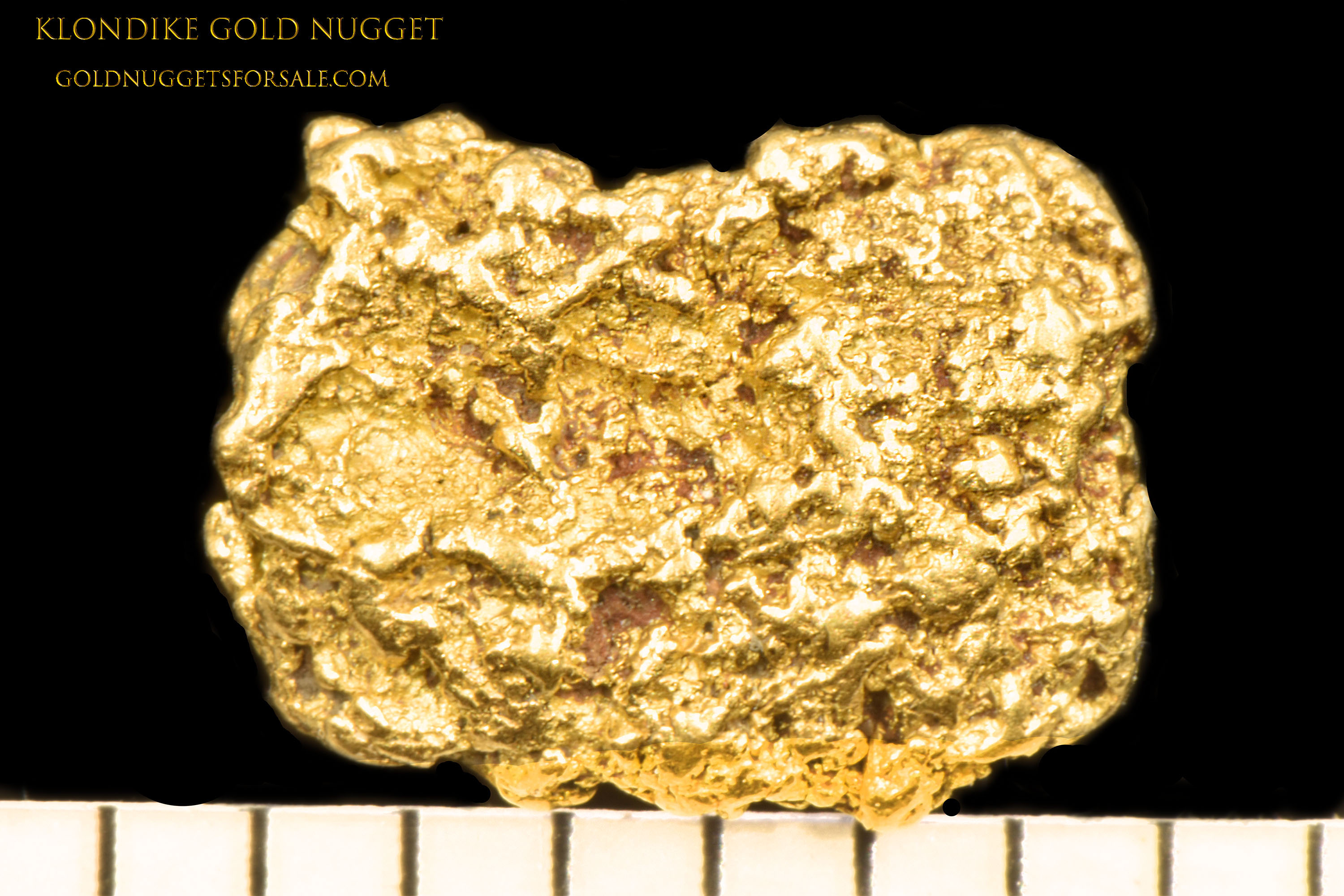 Detailed and Marvelous - Jewelry Grade Klondike Gold Nugget